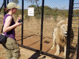 Sarah and Gandalf at Kevin Richardson's Wildlife Sanctuary in South Africa